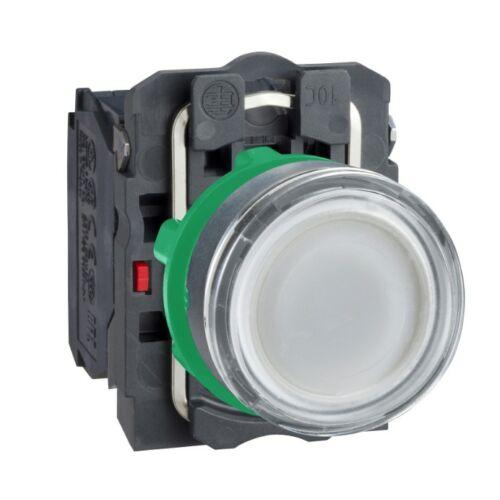 XB5-AW31B5 LED világító nyomógomb fehér