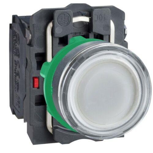 XB5-AW31M5 LED világító nyomógomb fehér