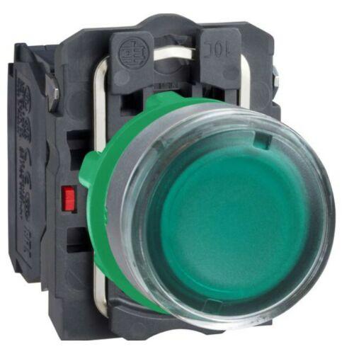 XB5-AW33B5 LED világító nyomógomb zöld