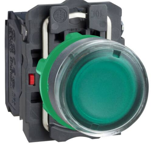 XB5-AW33M5 LED világító nyomógomb zöld