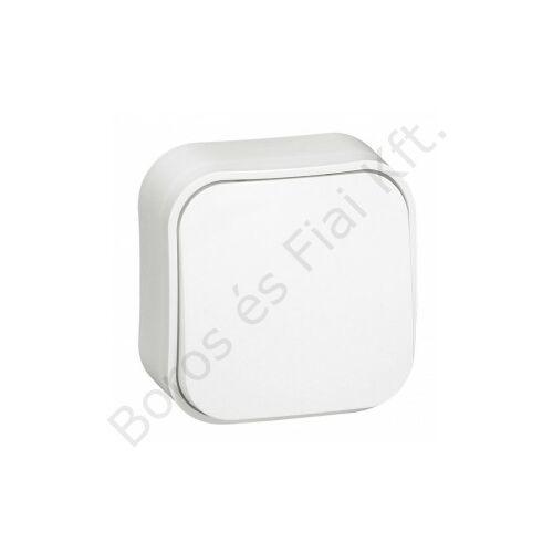 Legrand Forix IP20 falon kívüli egypólusú kapcsoló, 10 AX - 250 V~ fehér